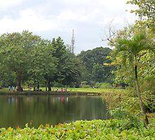 Ninoy Aquino Park and Wildlife Nature Center Lagoon  by walterericsy