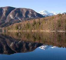bohinj reflections by Ian Middleton