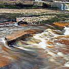 Ennistymon Falls by Martina Fagan