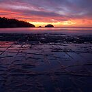 Sunrise over the Tessellated Pavement by CezB
