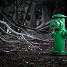 Fire Hydrant - The Sea Ranch, CA by Jon Yager