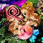 Botanical Dissonance by Christopher Nicola