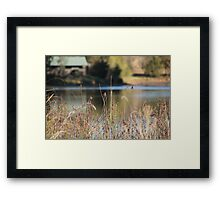Simplistic in Nature Framed Print