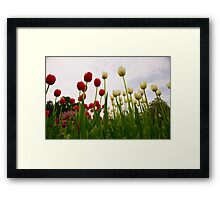 Standing Beautifully Framed Print