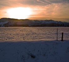 A Front Range Spring Sunset by Roschetzky