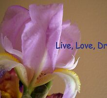 Live, Love, Dream by Debbie Meyers