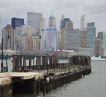 I can see New York by redflower