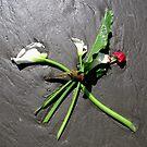Sea Bouquet by Tama Blough