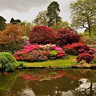 Over The Pond At Exbury Gardens by delros