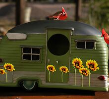 Motorhome for the Birds by Winona Sharp