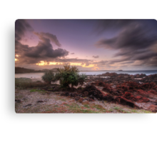 Hastings Point, New South Wales Canvas Print