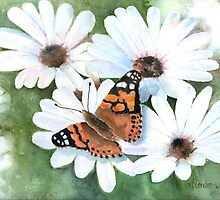 Butterfly On A Daisy by arline wagner