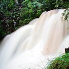 Lake Eildon Falls by Mili Wijeratne