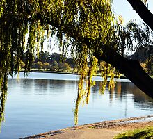 Lake Burley Griffin by lu138