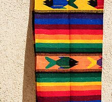 Bright Serape by phil decocco