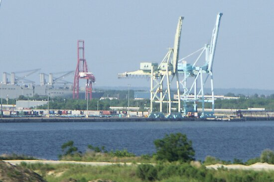 Cranes Connecting Continents by Bob Hardy