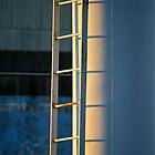 Ladder Light by Lynn Wiles