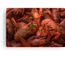 Our Mud Bugs. Canvas Print