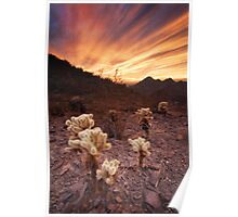 Phoenix Mountains Park and Preserve Sunset Poster