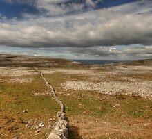 Burren View 1 by John Quinn