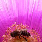 Busy Bee by emele