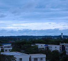 brunei city by bayu harsa