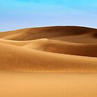 Dunes of Maspalomas by Rob Hawkins
