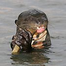 Otter munchies by Anthony Brewer