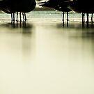 @ sea level by Jenny Ryan