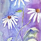 Daisies in my garden by Maree Clarkson