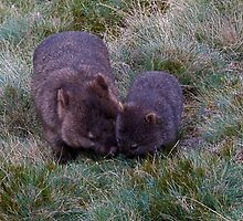 Mum & Bub by TheMystic