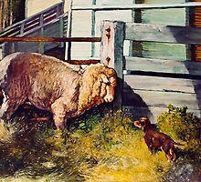 Bailup Sheep by Pieter  Zaadstra