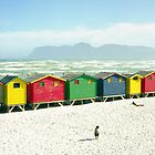 Colourful beach huts in South Africa by Andrew Lever