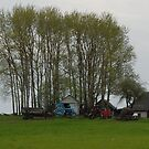 Village scene/Spring colors by Antanas