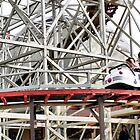 The Wild Mouse by JacquiK