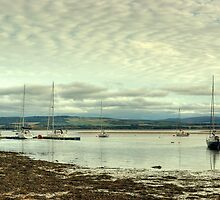 Findhorn Estuary  by VoluntaryRanger