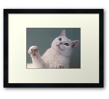 Talk to the Paw!!  Framed Print