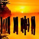 NOCKAMIXON STATE PARK  by MIKESANDY