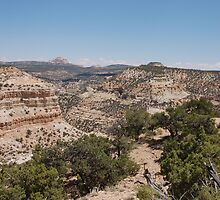 Canyon View - Utah by wschruba