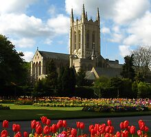 Abbey Gardens, Bury St Edmunds by wiggyofipswich