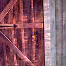 Old Cabin Door by Tibby Steedly