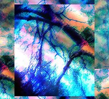 Abstract Composition – May 13, 2010  by Ivana Redwine