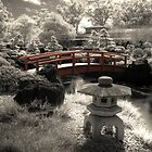 Gardens Infrared by Michael Lynch