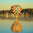Water Landing by Carrie Bonham