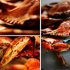 Maryland Blue Crabs  by KeelHauledMike