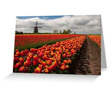 The Colour of Spring Greeting Card