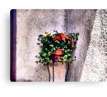 The Corner Flower Pot Canvas Print