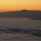 awash in a sea of fog by fototaker