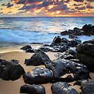 Oahu Rocky Beach by Inge Johnsson