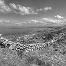 Black Head scenic view by John Quinn
